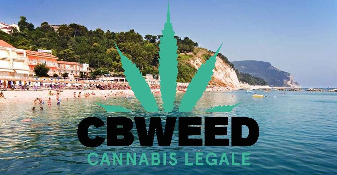 Negozio Cannabis Light Porto Recanati Chiuso Accusa Spaccio