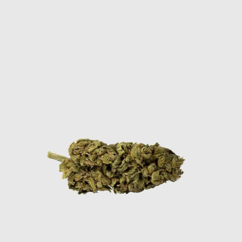 Cannabis Light Blue Cheese CBD