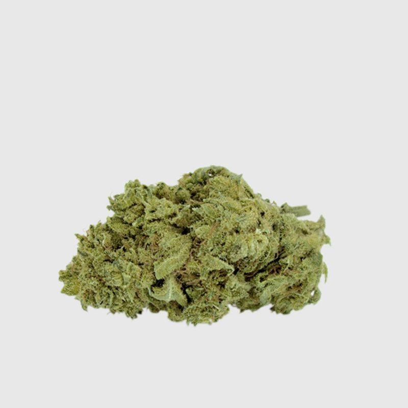 Cannabis Light Super Silver Haze CBD