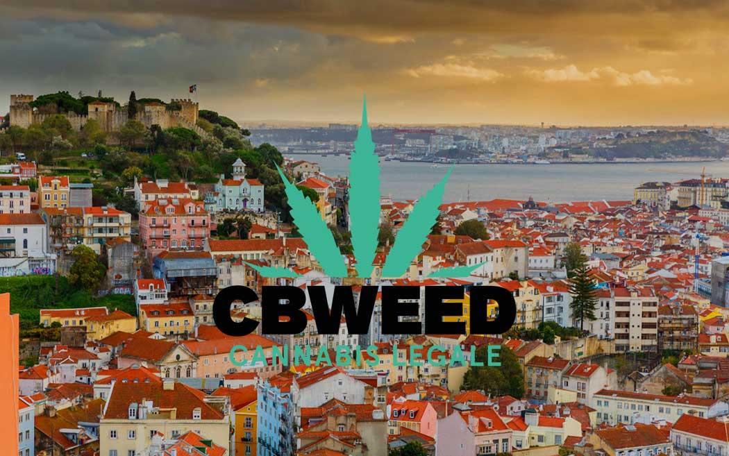 Best tourist destinations who love cannabis