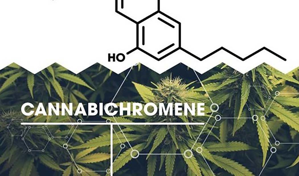 Cosa Cannabicromene Cannabinoide Antinfiammatorio Antidolorifico