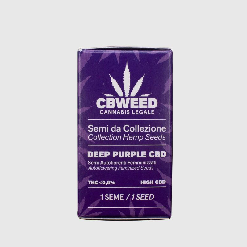 CBWEED-Semi-CBD-Deep-Purple