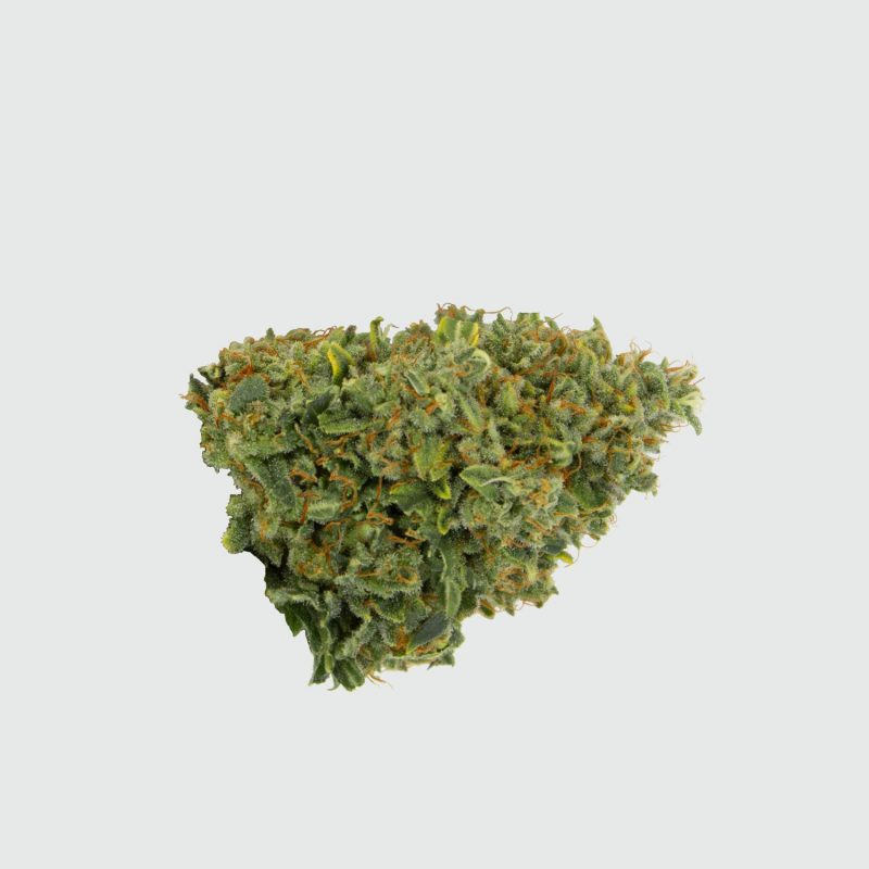 CBWEED-Green-House-Seed-Franco's-Lemon-Cheese-CBD