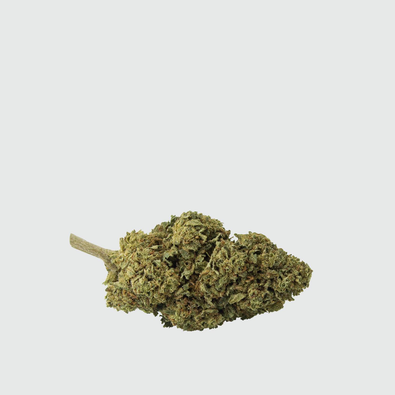 Cannabis-Light-Critical-Mass-CBD-EU