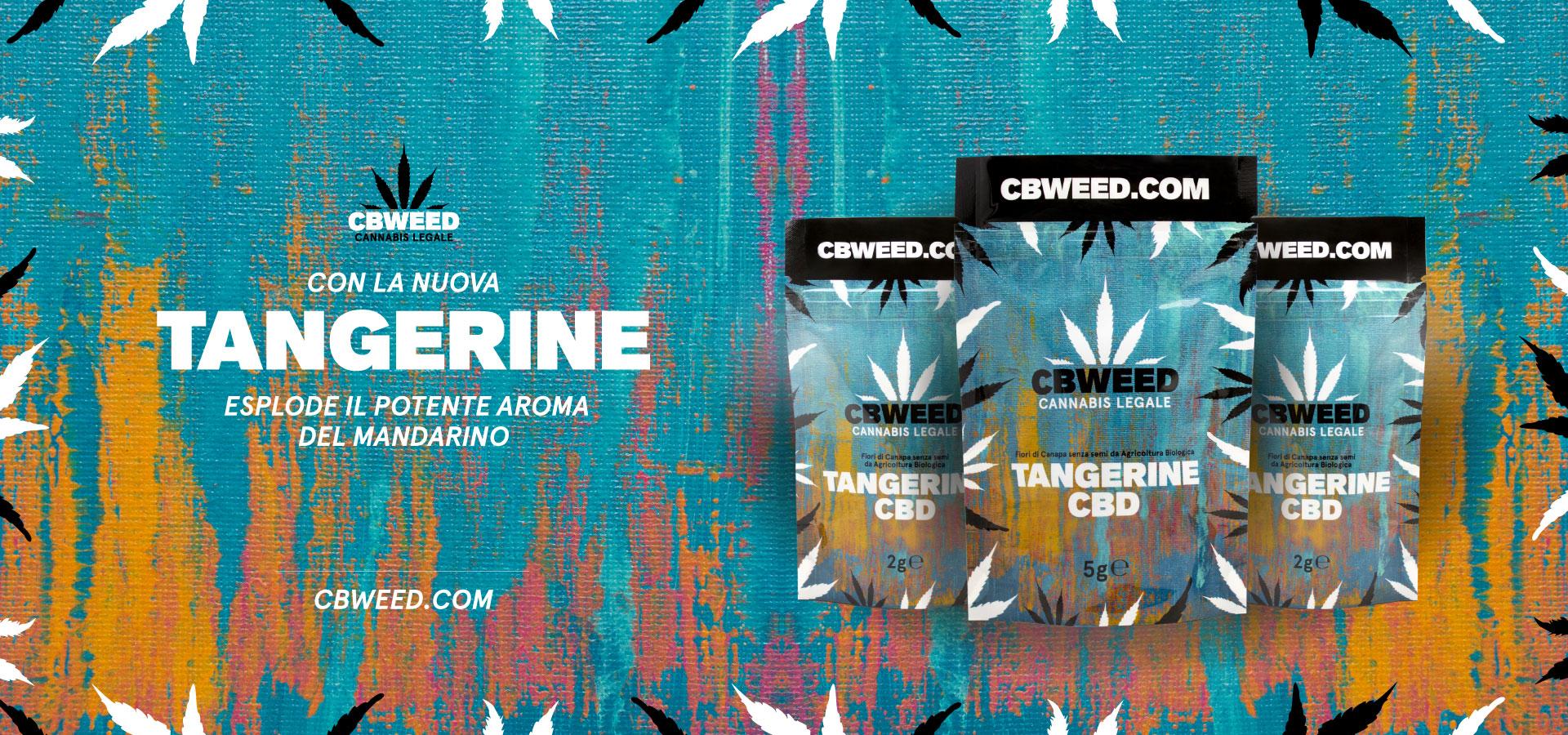 tangerine-cbweed