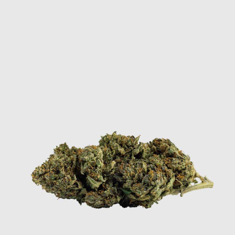 cannabis-light-cbweed-tangerine-cbd